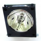 300953 - Genuine LIESEGANG Lamp for the DV X588 projector model