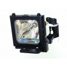 - Genuine SELECO Lamp for the SLC UP1 projector model