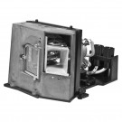 Original Inside lamp for CLARITY CHEETAH projector - Replaces 750-0107