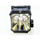 TDPF1PLUS - Genuine TOSHIBA Lamp for the TDP F1 PLUS projector model