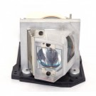 - Genuine DUKANE Lamp for the I-PRO 8410 projector model