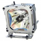- Genuine PROJECTOREUROPE Lamp for the TRAVELER 787 projector model
